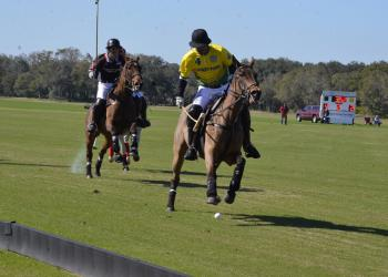 A special weekday polo match today (Friday, Jan. 29) at the Sarasota Polo Club was postponed due to wet grounds.