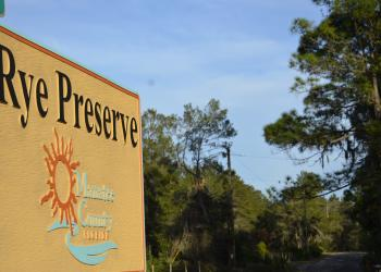 The 40-acre property bought by the developer for off-site mitigation is located in the center of Rye Preserve and has been privately owned for decades.