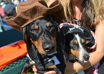 20th annual Howl-O-Ween Costume Contest
