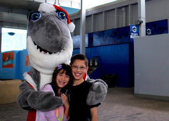 On Saturday, Nov. 30, Julia and Brandon Yu pose with Gilly the Shark.
