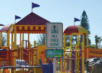 City commissioners want a leash law put into effect at Payne Park, but propose opening a dog park nearby. File photo.