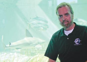 Dr. Robert Hueter, of Mote Marine, co-authored a paper that outlines four classifications to better describe human interactions with sharks.