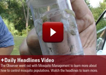 Mosquitos endanger more human lives then any other animal on the planet. Learn more in today's headlines.