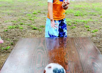 Vincent D'Amato plays a milk bottle bowling game during Dakin Dairy's family fun day June 15. 2