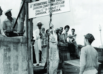 Competitors admire a catch at the Sarasota Tarpon Tournament in 1946. Courtesy photo