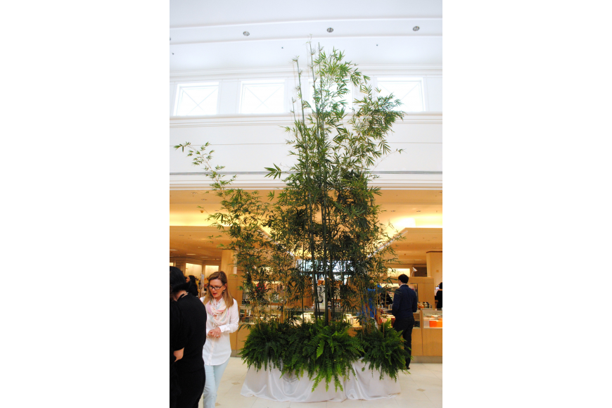 Bamboo was brought into Saks Fifth Avenue Sarasota for the John Hardy Spring 2014 Collection Presentation.