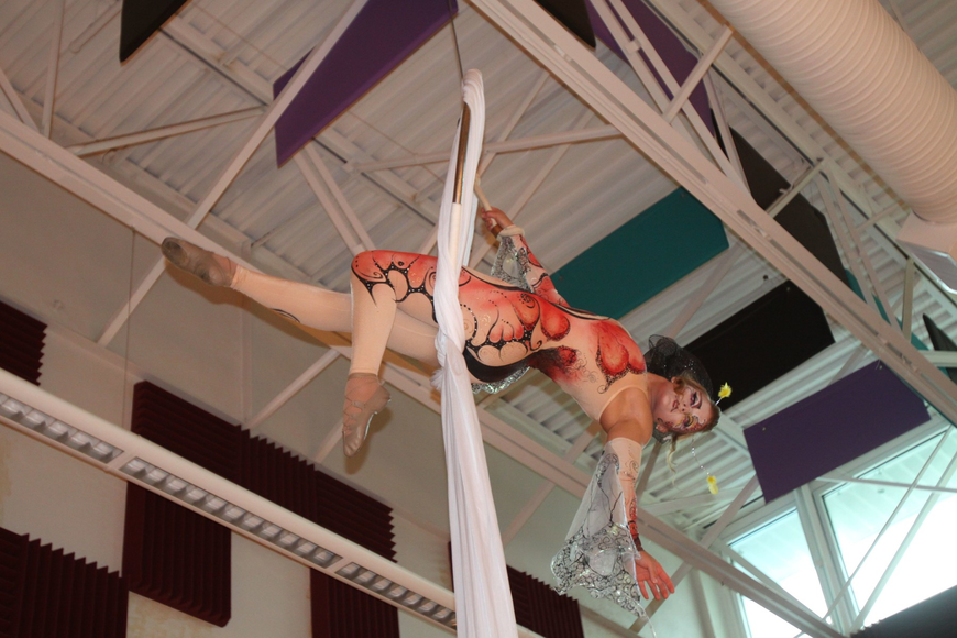 A performer from Cirque Vertigo dressed as a butterfly and performed above the crowd.