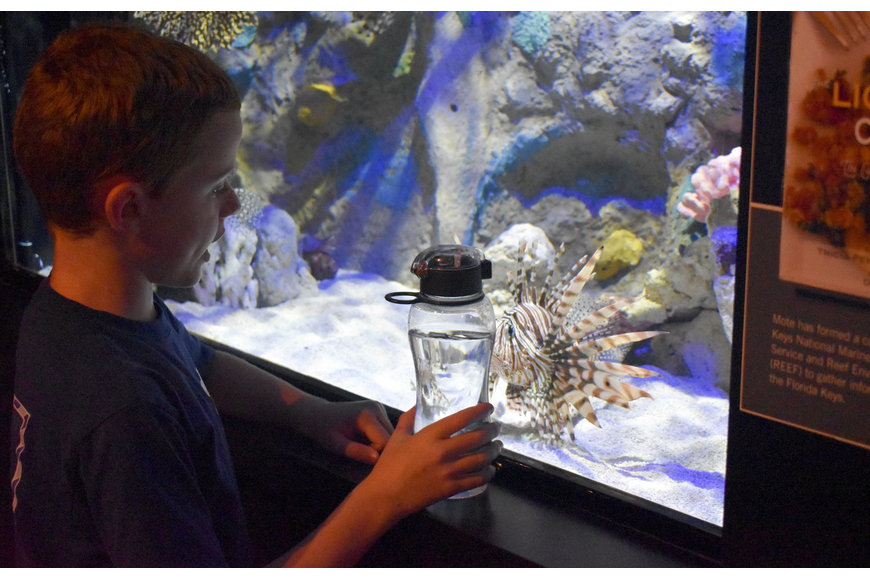 Austin Taylor has a starring match with a lionfish.
