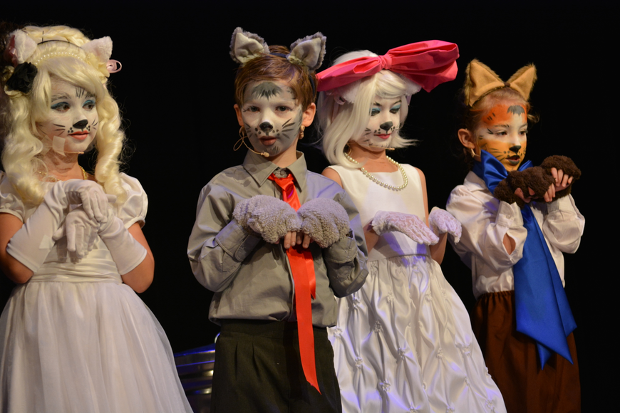 Aristocat kittens looked pretty for their master.