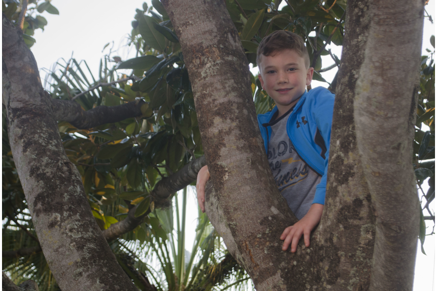 Chance McArtor climbs a tree in the Church of the Redeemer lawn before the movie night.
