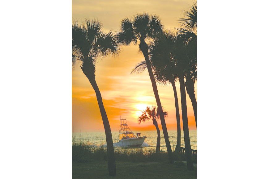 Ellen Michelson submitted this sunset photo, taken at Sandy Cove, on Siesta Key.
