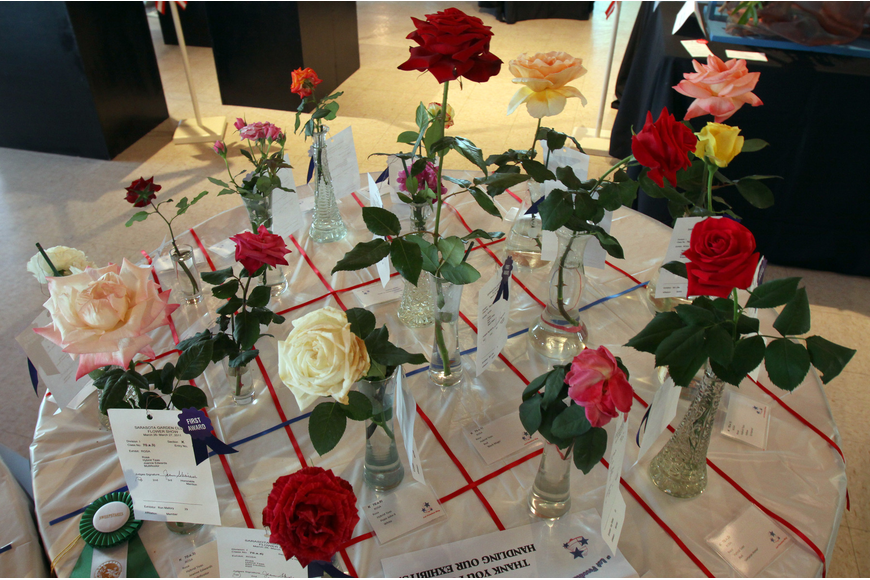 The rose display, labeled as
