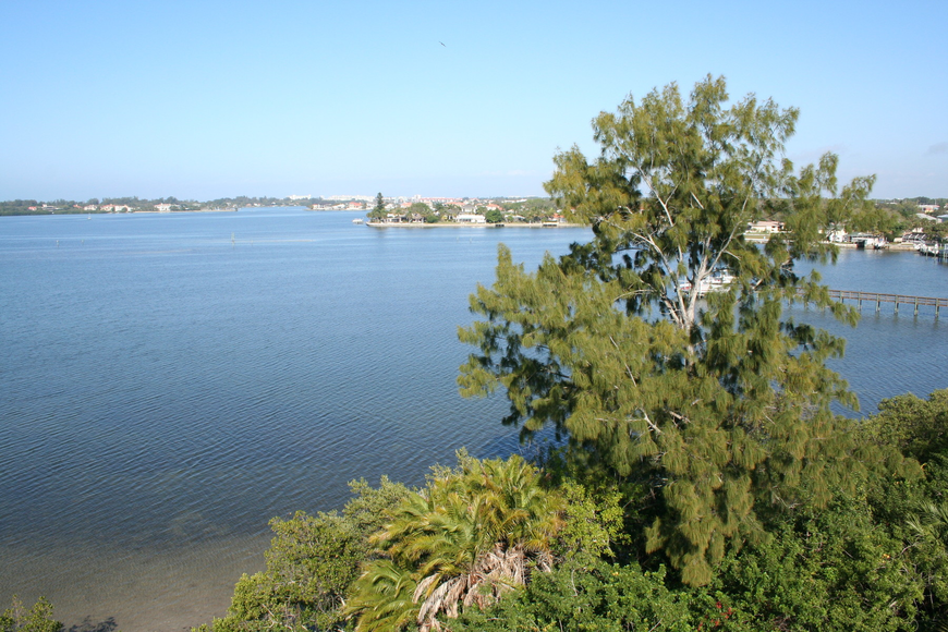 The Citizens Advisory Committee helps develop programs to restore and protect Sarasota Bay.