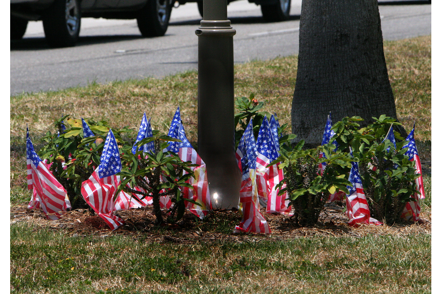 A dozen or so American flags set up around the base of the sign denoting the Blue Star Memorial Highway flap in the breeze on Flag Day, Tuesday, June 14.