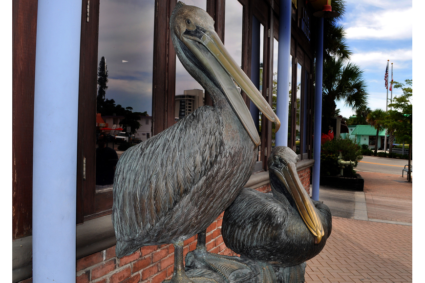 Where is this pelican statue on Siesta Key?