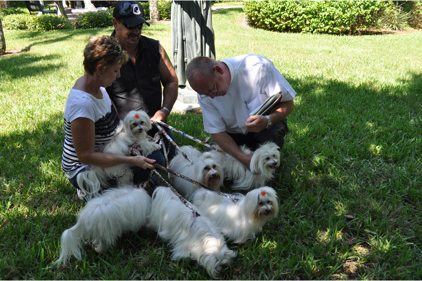 Rev. Bernthal blesses Marianne and Dan Blazowich's six dogs.