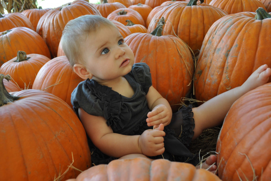 Sitting among the pumpkins, 8-month-old Emma Pillsbury made for a picture-perfect moment.