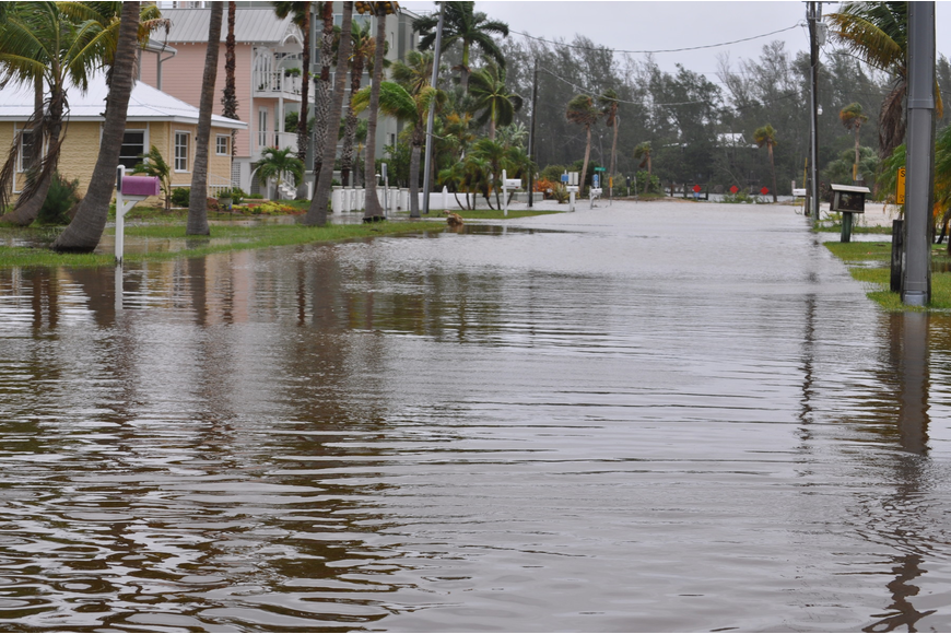 The Longbeach Village neighborhood saw flooding in the streets beginning Sunday. Photos by Mallory Gnaegy.