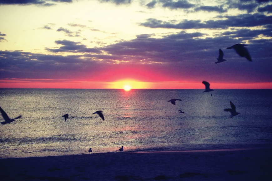 McKenzie Chadwell submitted this sunset photo, taken at on Lido Key.
