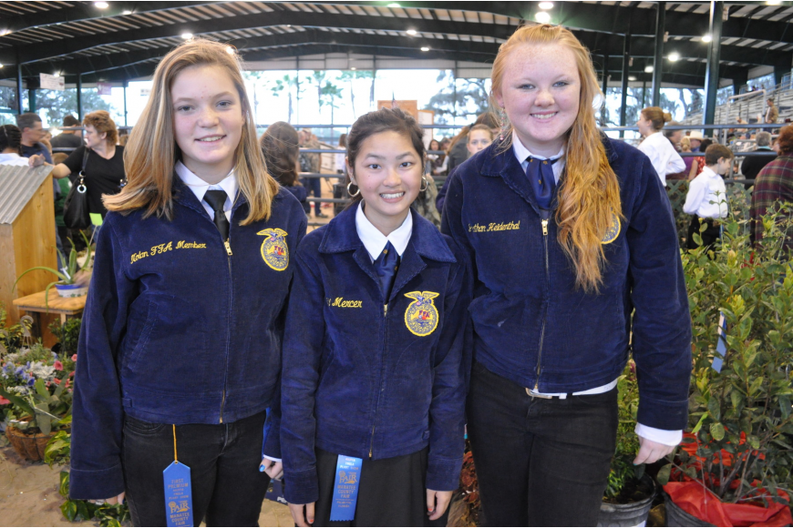 Sherlyn Best, Haley Mercer and Sandra Maddox represented Nolan Middle Schools FFA chapter.