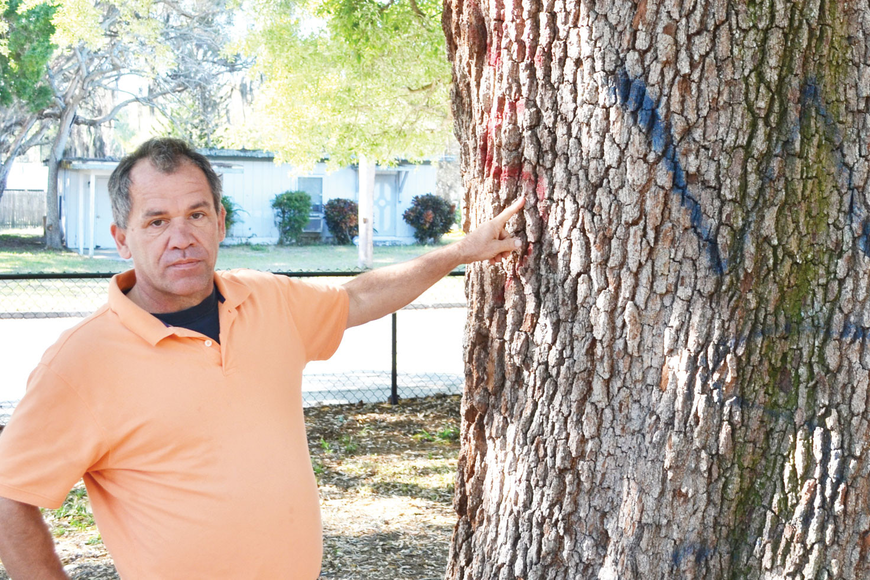 Rick Farmer has seen graffiti on some of the towering oaks near the playground.