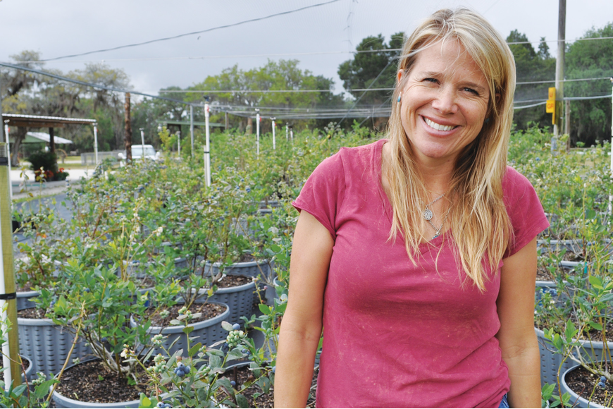 Shelby King, co-owner of King Family Farm, may have put her dream of offering a variety of fresh produce to the public on hold, but she's moving ahead with other ideas to keep the farm going. The farm now offers u-pick blueberries and peaches.