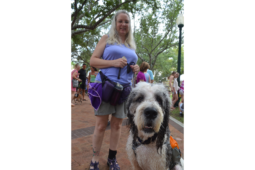 Jeanine Brawn is a dog trainer. She has a St. Berdoodle named B.E.N. or Being Enthusiastically Noble. He is a hybrid between a St. Bernard and a standard poodle. He carries an icepack in his backpack to keep him cool.