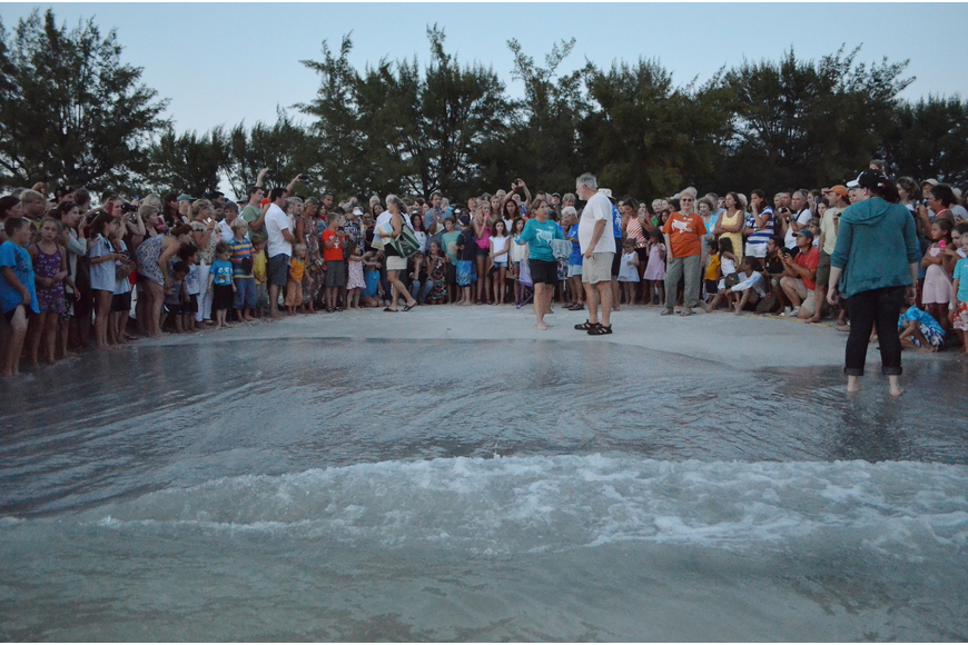 In July, the Longboat Key Turtle Watch experienced its largest crowd for an excavation. More than 400 people were in attendance.