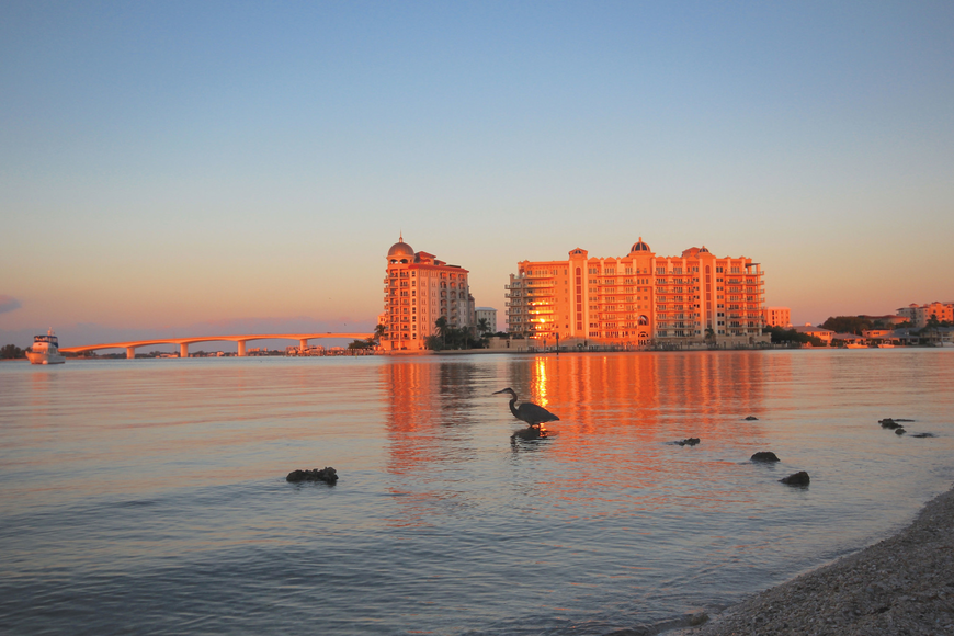 Lisa Greenberg submitted this sunrise photo, taken along the Sarasota bayfront.