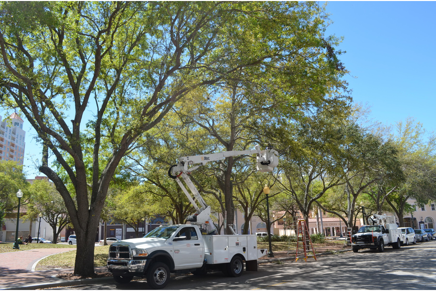 Crews work on installing new lights at Five Points Park.