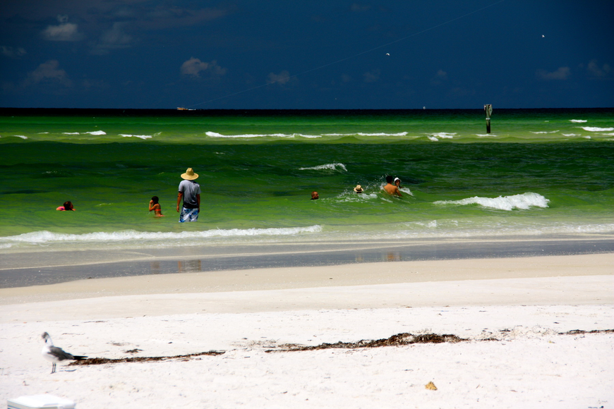 More than two-thirds of Sarasota County's Gulf shoreline is critically eroded, according to Sarasota County Coastal Resources  Manager Laird Wreford.