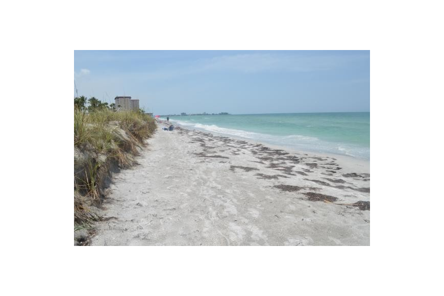 Lido Key residents say their shoreline is in need of immediate assistance.