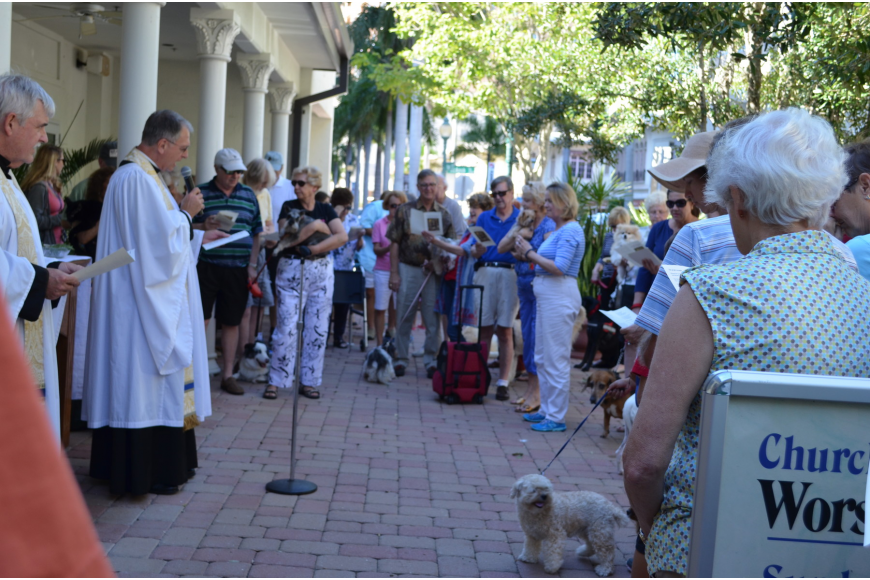 Church of the Redeemer welcomed all sorts of pets and their humans for the Feast of St. Francis Blessing of the Animals.