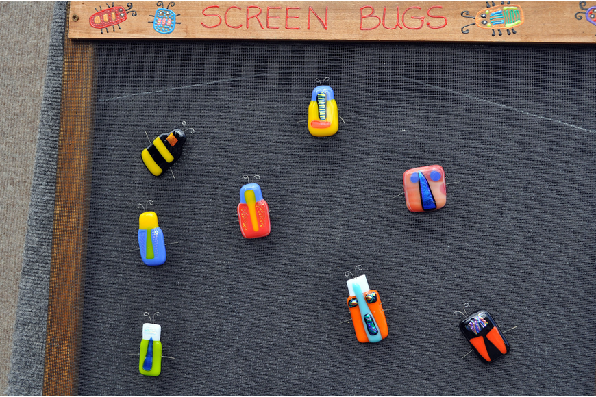 Debbie Hagstrom's Screen Bugs