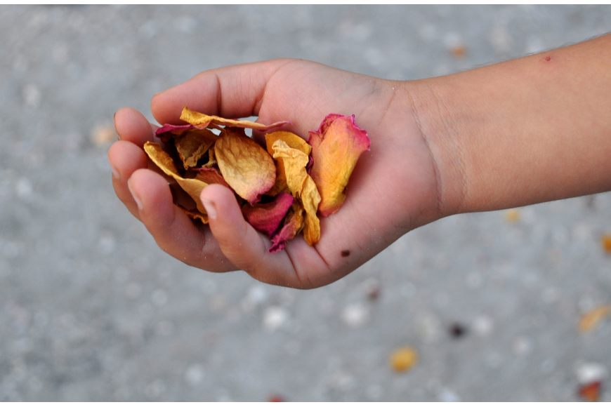 Aukon Rivero threw dried rose petals down the beach and into the Gulf of Mexico during the end of the ceremony.