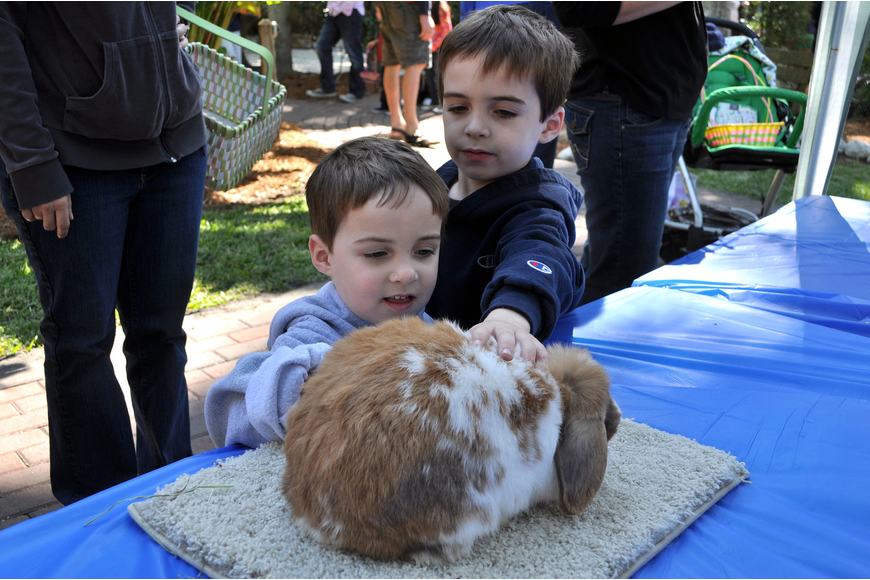 Beckett, 3, and Foster, 5, Smith have fun petting Steson the bunny at the Hare Raisers table.