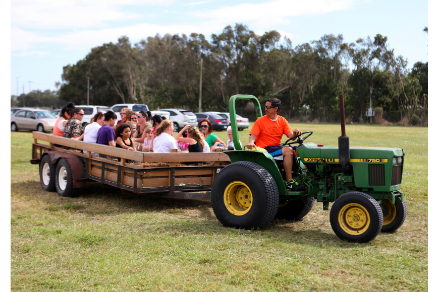 People piled into the back of a trailer bed to be driven around by a tractor Saturday, Oct. 27, at the Sarasota Pumpkin Festival.