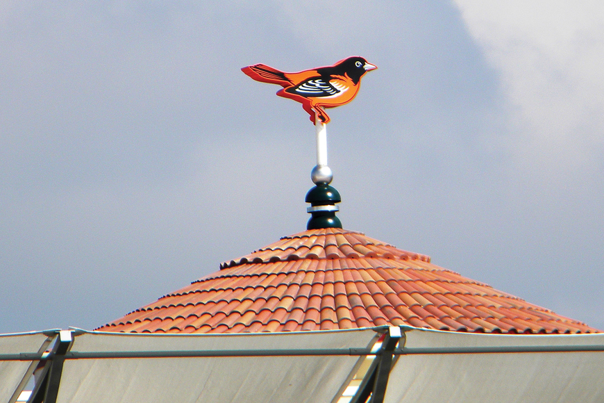 The Oriole wind vane atop Ed Smith Stadium proclaimed the start of the Baltimore Orioles' 2011 spring training as well as the completion of major renovations of the stadium.