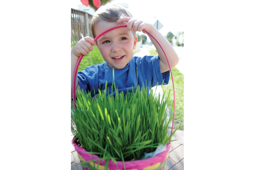 Buck, 2, even grew his own grass for his Easter basket, so he would have a safe place for all his eggs from the Village Easter Egg Hunt.
