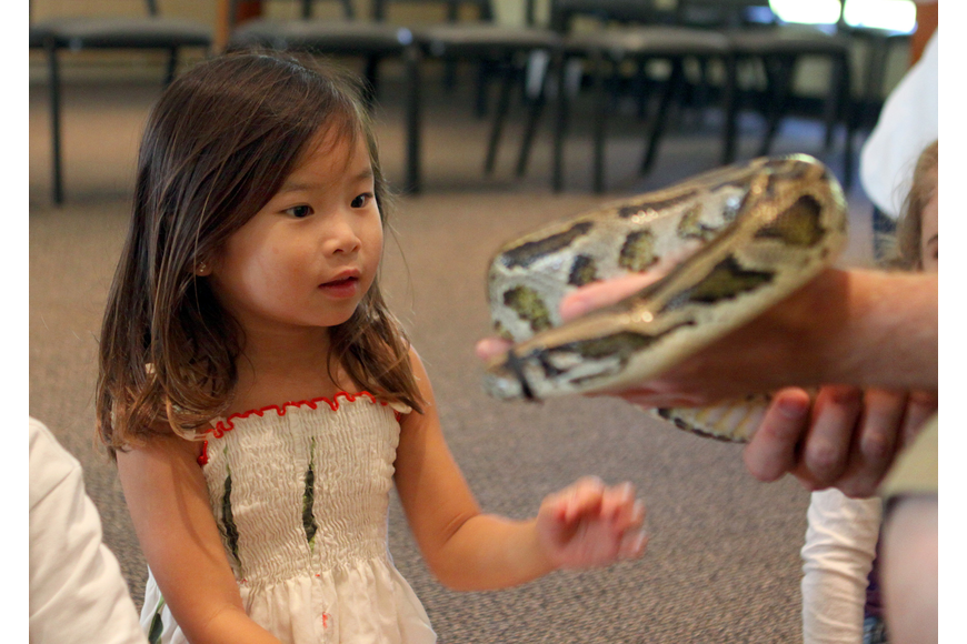 Makenna Geach reaches out to touch Lucky, a Burmese python.