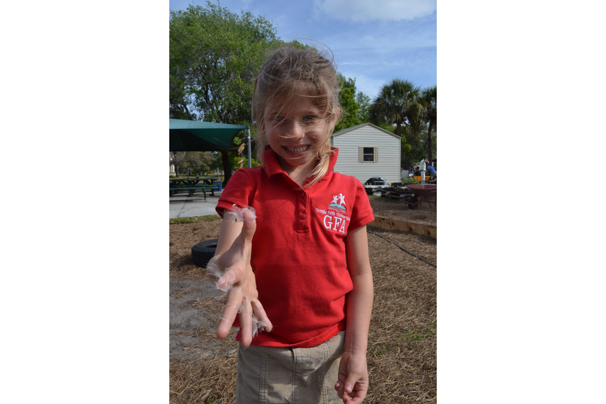 Camiryn Opstal, 5, releases seeds and learns about the life cycle of a seed.