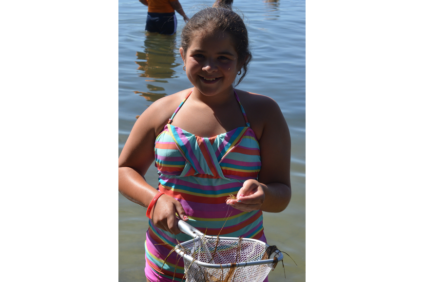 Kalie Devaney, 11, is excited about the large shrimp she caught in her net.