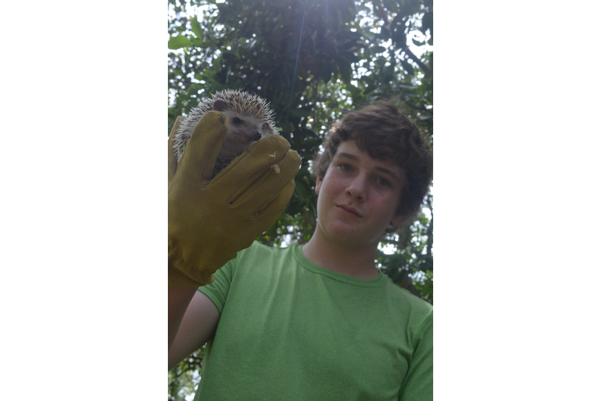 Mathew Pitchford, 13, got his African Pygmy hedgehog, Dobin, blessed.