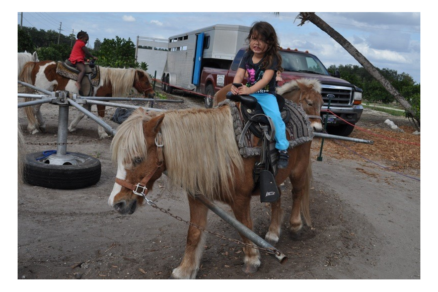 Casey Eman, 3, rode the pony with ease.
