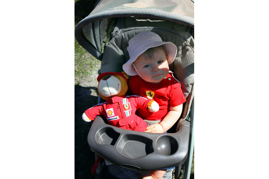 Zalan Guilbert, 8 months, with his bear on Saturday, Feb. 19 at the Sarasota Exotic Car Fest in St. Armand's Circle