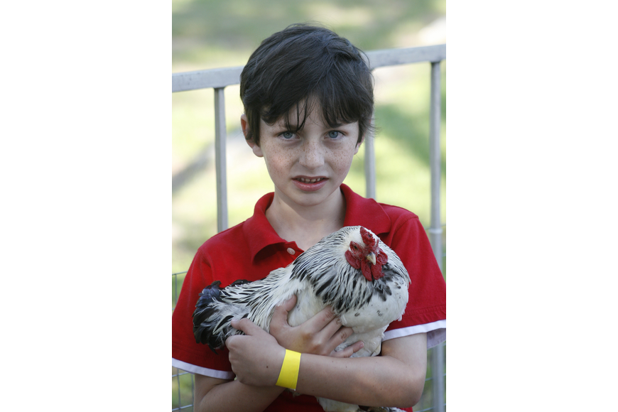 Grayson Haupt, 6, loved holding the animals in the petting zoo.