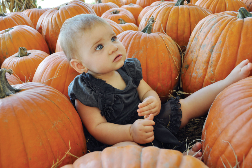 Eight-month-old Emma Pillsbury looks picture-perfect, during the Hunsader Farms Pumpkin Festival. Published Oct. 18, 2012.