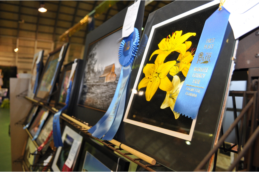 Fair-goers perused the best works of Manatee County residents, including these photographs.