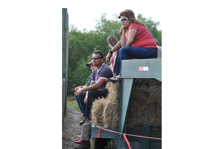Attendees watched the roping and penning competitions from hay bales on the sidelines.