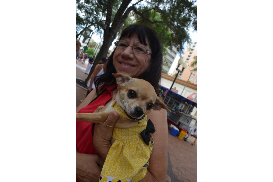 Chris DeLuna dresses her Chihuahua, Dixie, in a yellow sundress.